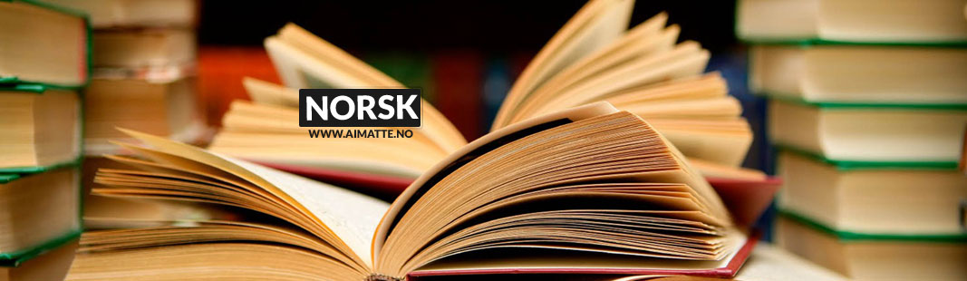 privatundervisning i norsk